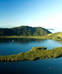 Ilha da Cotinga